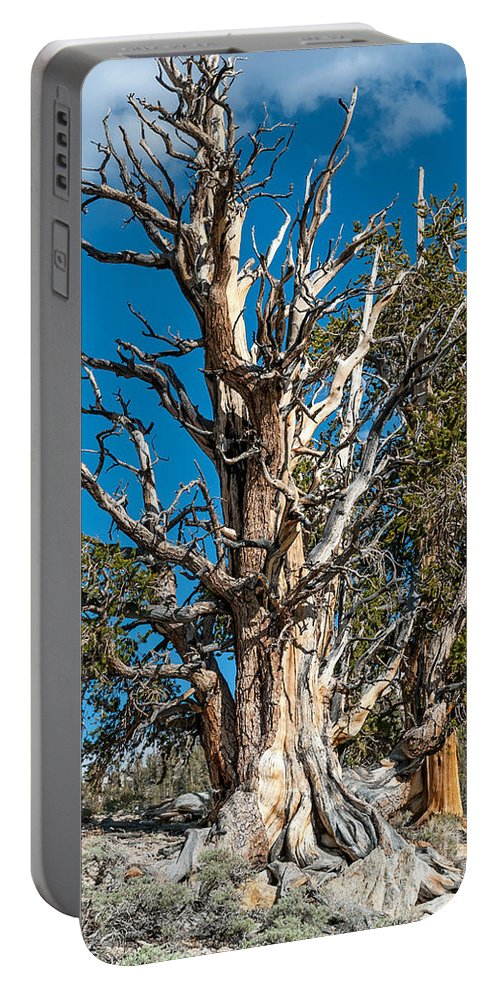 Mighty Portable Battery Charger featuring the photograph The Mighty by Stephen Whalen