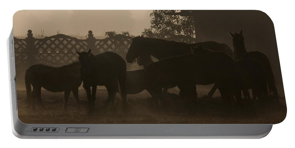 Misty Morning Portable Battery Charger featuring the photograph The Misty Morning by Angel Ciesniarska