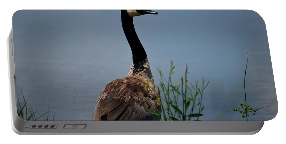 The Noble One Portable Battery Charger featuring the photograph The Noble One by Maria Urso
