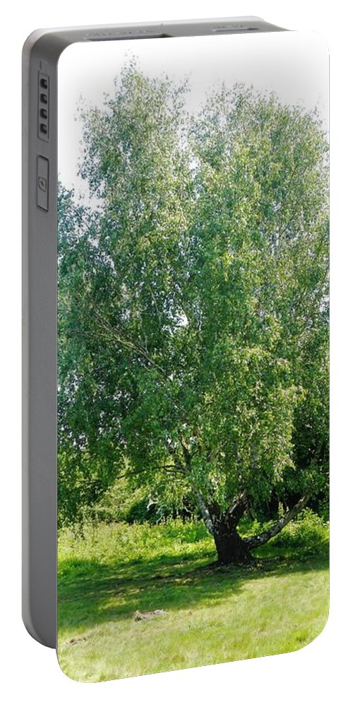 Nature Portable Battery Charger featuring the photograph The Old Birch Tree by Loreta Mickiene