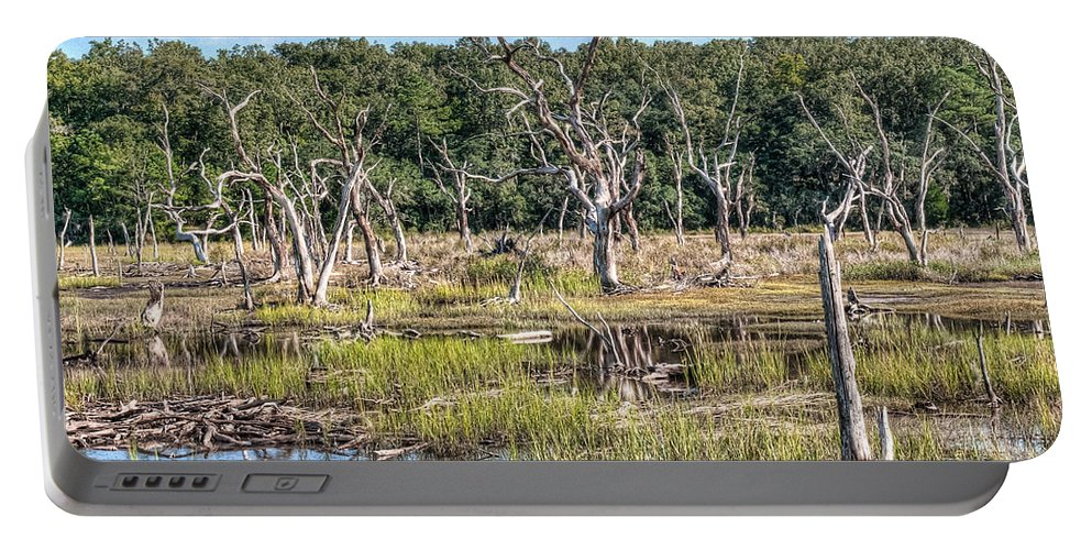 Marsh Portable Battery Charger featuring the photograph The Old Tree Graveyard by Scott Hansen