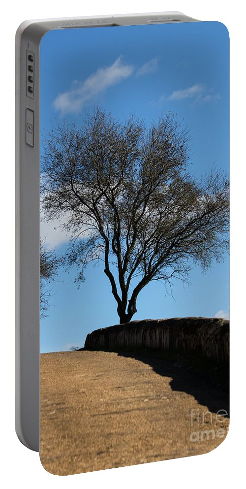 Tree Portable Battery Charger featuring the photograph The Other Side Of The Wall by Edgar Laureano
