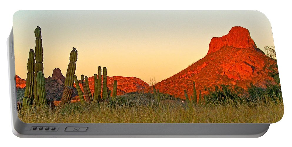 The Peak And Cardon Cacti In The Sunset In San Carlos Portable Battery Charger featuring the photograph The Peak And Cardon Cacti In The Sunset In San Carlos-sonora by Ruth Hager