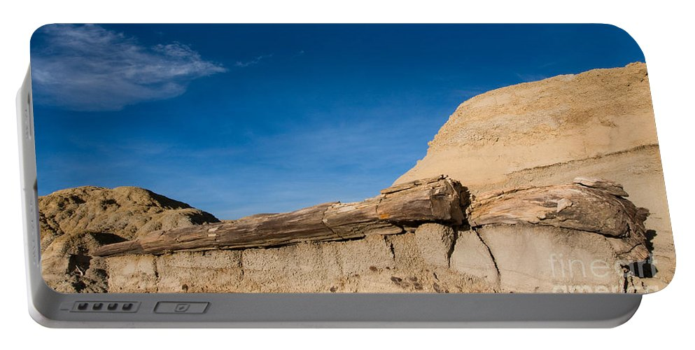 Petrified Wood Portable Battery Charger featuring the photograph The Petrified Log 2 by Vivian Christopher