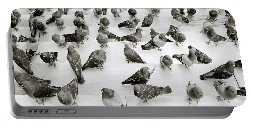 Abstract Portable Battery Charger featuring the photograph The Pigeon by Shaun Higson