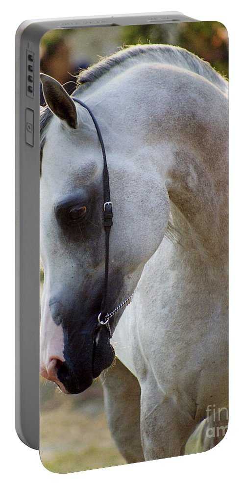 Horse Portable Battery Charger featuring the photograph The Polish Arabian Horse by Angel Ciesniarska