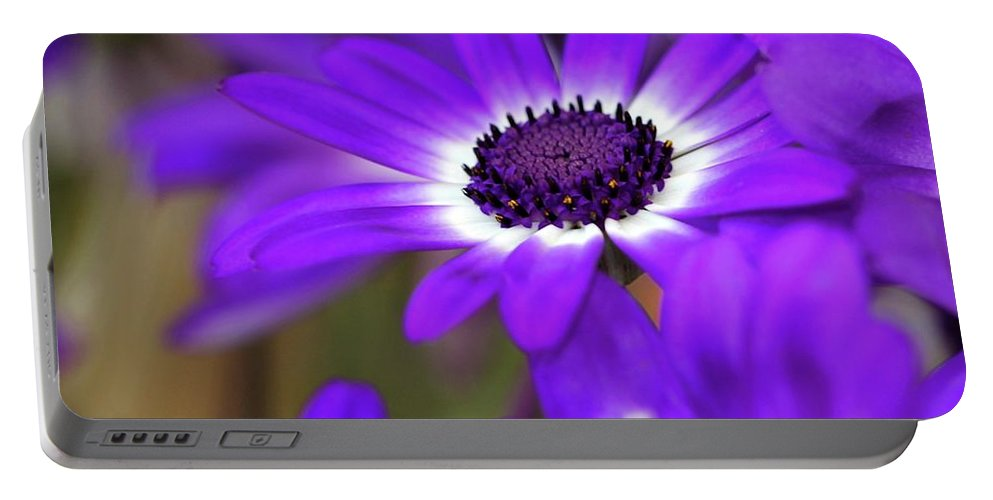 Flower Portable Battery Charger featuring the photograph The Purple Daisy by Sabrina L Ryan