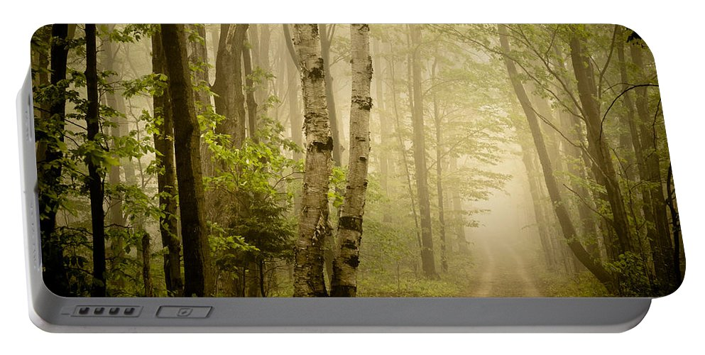 Woods Portable Battery Charger featuring the photograph The Road Through The Woods by Olivia StClaire