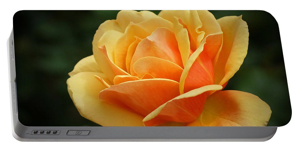 Beautiful Portable Battery Charger featuring the photograph The Rose 1 by Ernie Echols