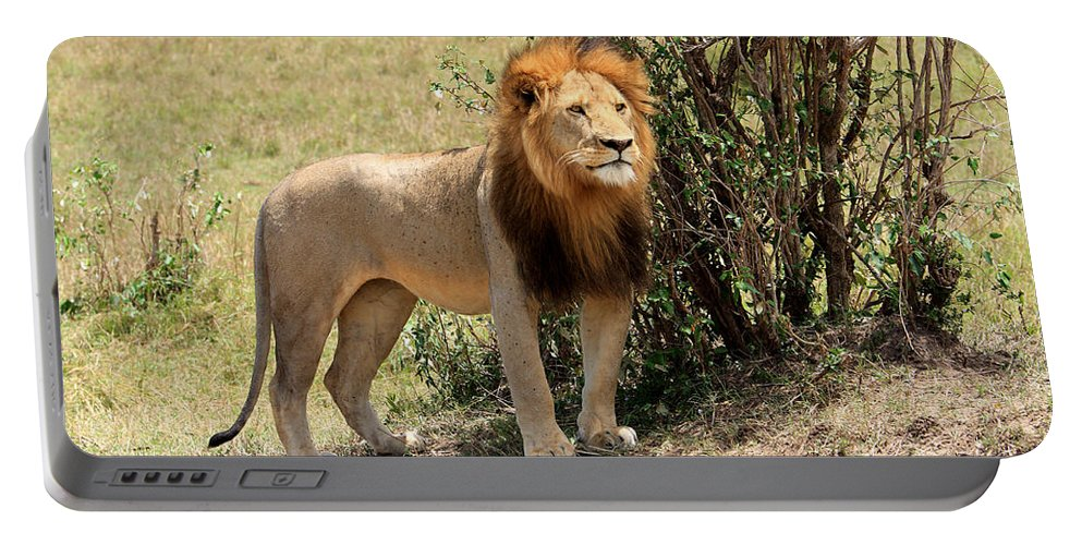 Africa Portable Battery Charger featuring the photograph King Of The Savannah by Aidan Moran