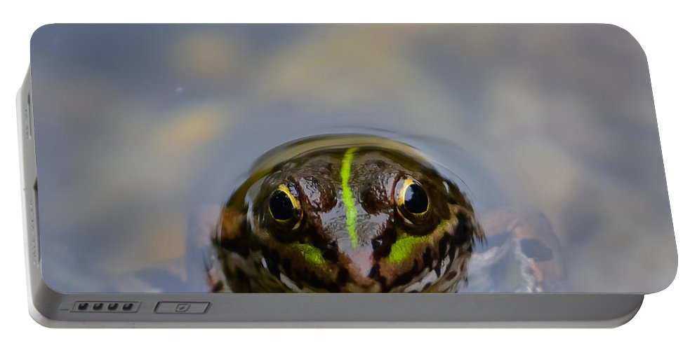 Frog Portable Battery Charger featuring the photograph The Shy Frog by Alexandre Martins