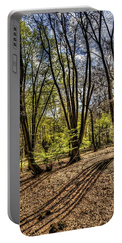 Forest Portable Battery Charger featuring the photograph The Spring Forest by David Pyatt