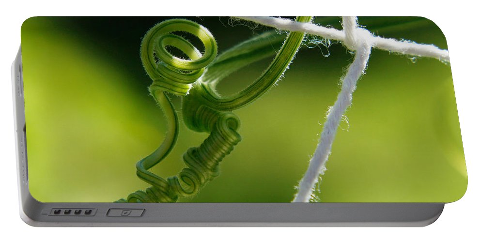 Vine Portable Battery Charger featuring the photograph The Stretch by Carol F Austin