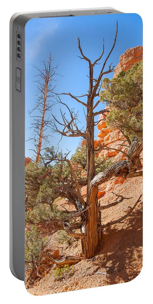 Red Canyon State Park Portable Battery Charger featuring the photograph The Survivor by John M Bailey