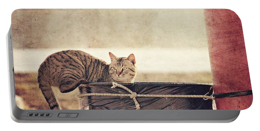 Cat Portable Battery Charger featuring the photograph Dumpster Diver by Pam Holdsworth