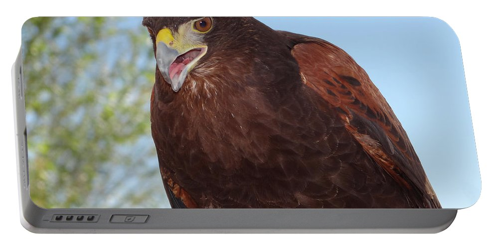Bird Portable Battery Charger featuring the photograph The Teacher by Jamie Ramirez