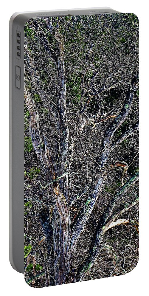Portable Battery Charger featuring the photograph The Tree by MTBobbins Photography