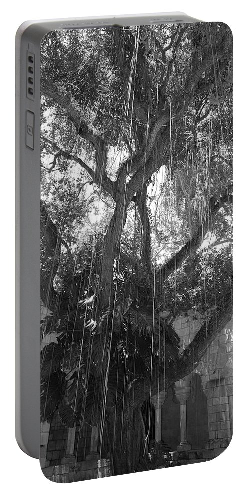 Black And White Portable Battery Charger featuring the photograph The Tree Vines by Rob Hans