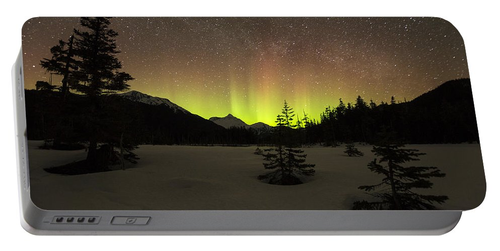 Aurora Portable Battery Charger featuring the photograph The Trees by Ted Raynor