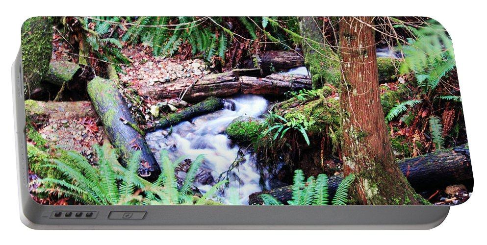 Creek Portable Battery Charger featuring the photograph The Unknown Creek by Edward Hawkins II