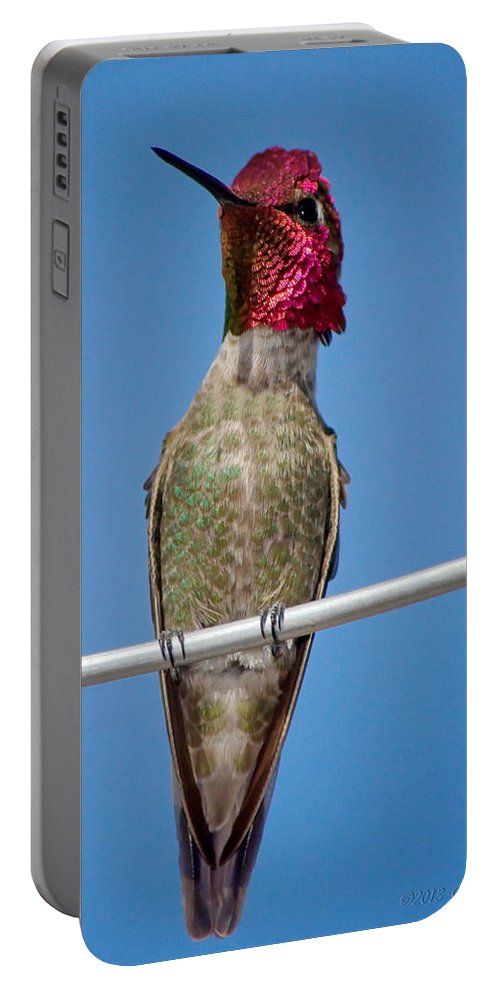 Animal Portable Battery Charger featuring the photograph The Watcher by Ron D Johnson
