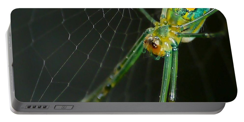 Anthonysr Image Portable Battery Charger featuring the photograph The Web by Anthony Walker Sr