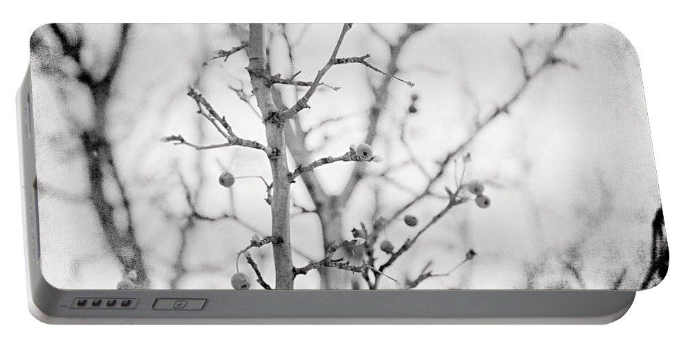 Black And White Portable Battery Charger featuring the photograph The Winter Pear Tree In Black And White by Lisa Russo