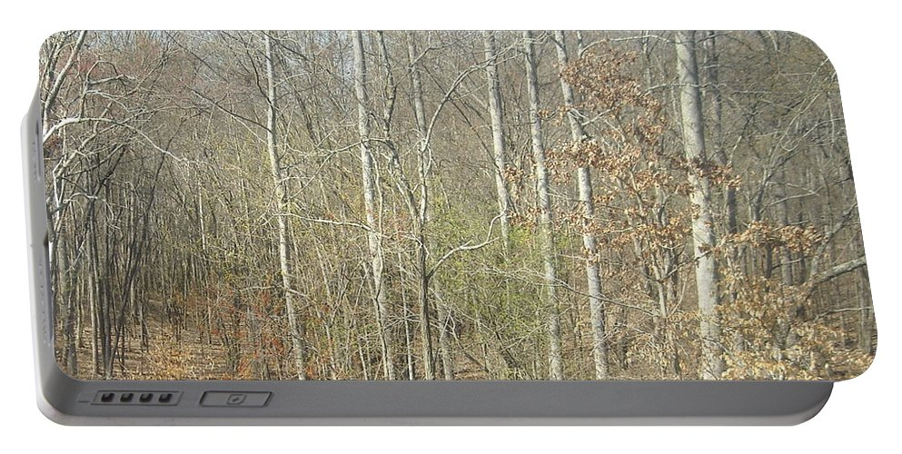 Woods Portable Battery Charger featuring the photograph The Woods by Joseph Baril