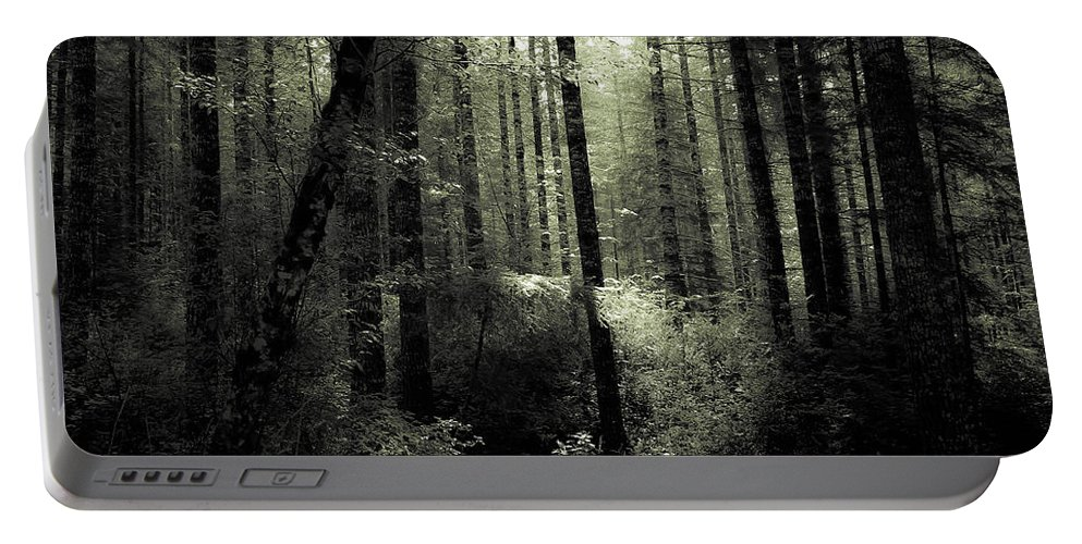 Forest Portable Battery Charger featuring the photograph The Woods by Katie Wing Vigil