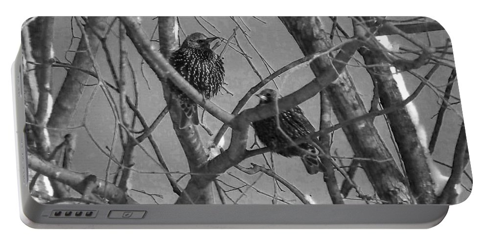 Birds(starlings) Portable Battery Charger featuring the photograph There's Something About These Two by Linda Francis