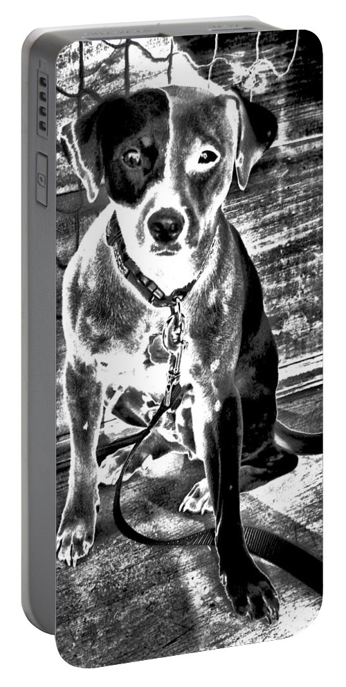 Dogs Portable Battery Charger featuring the photograph They Call Me J.r. by Robert McCubbin