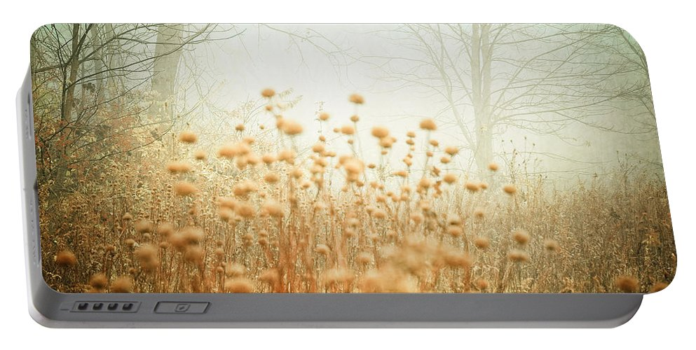 Pastel Portable Battery Charger featuring the photograph They Danced Alone by Olivia StClaire