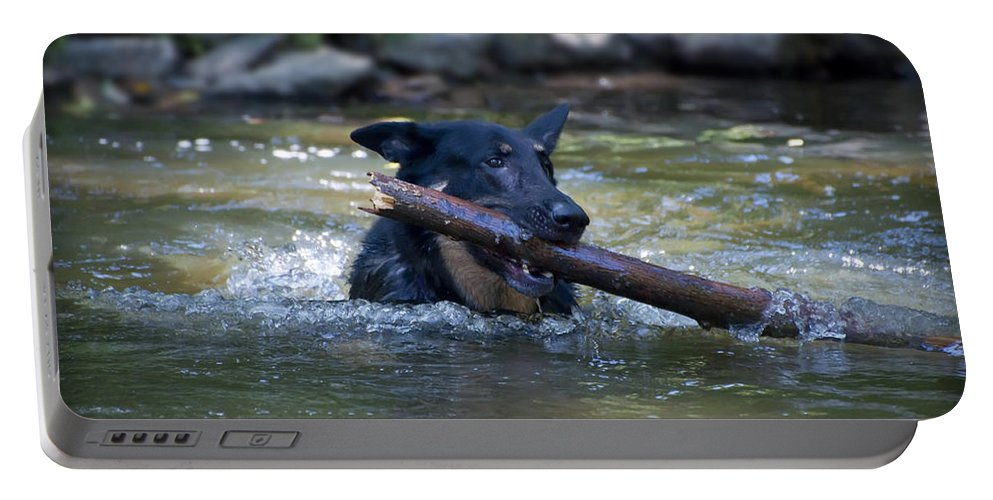 This Portable Battery Charger featuring the photograph This Dog Loves To Play Fetch by Bill Cannon