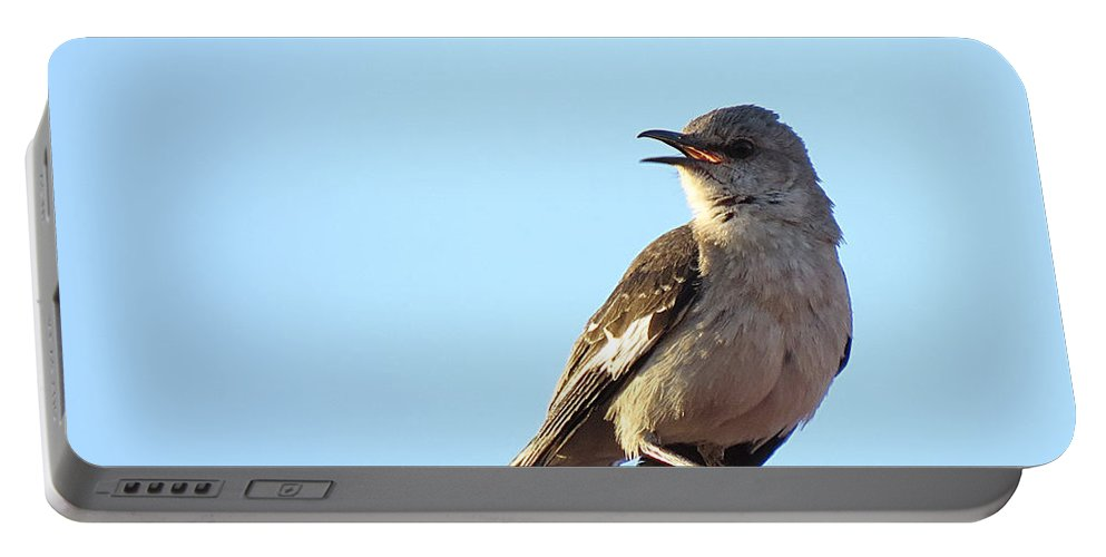 Mockingbird Portable Battery Charger featuring the photograph This Spring's Mockingbird by Carl Deaville