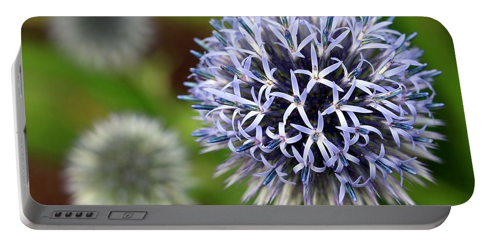 Thistle Portable Battery Charger featuring the photograph Thistle Bloom by Kenny Glotfelty