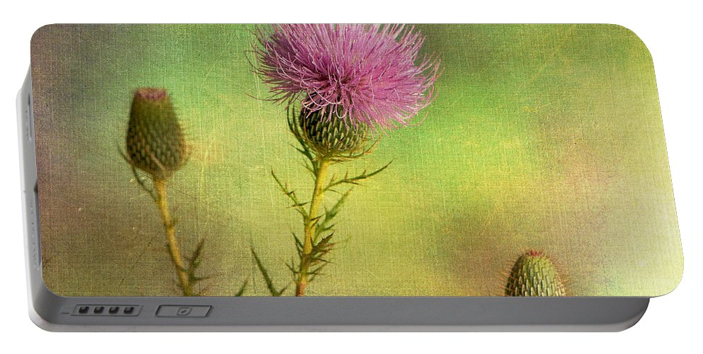 Texture Portable Battery Charger featuring the photograph Thistle by Randy Walton