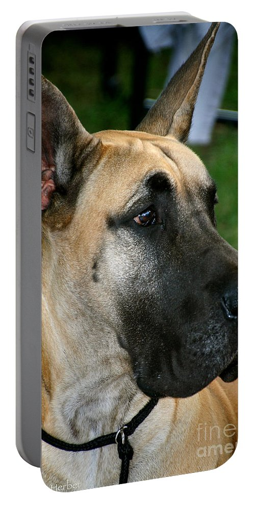 Animal Portable Battery Charger featuring the photograph Thor by Susan Herber