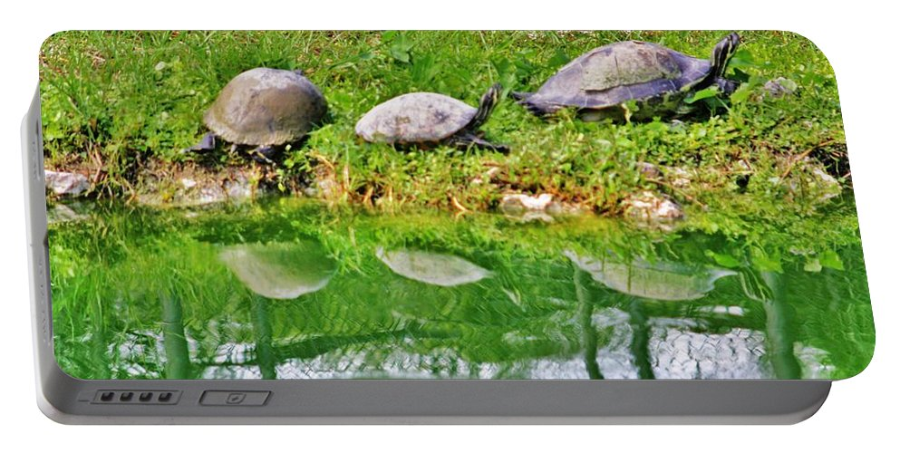 Everglades Portable Battery Charger featuring the photograph Three In A Row by Chuck Hicks