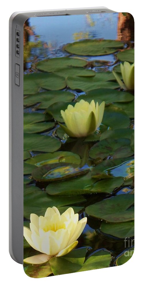 Lilies Portable Battery Charger featuring the photograph Three Yellow Lilies by Eric Schiabor