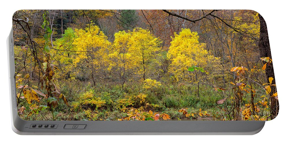 Tree Portable Battery Charger featuring the photograph Three Yellow Trees by John M Bailey