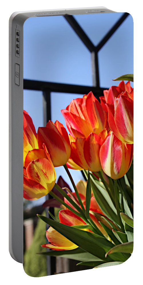Flower Portable Battery Charger featuring the photograph Through The Fence by Tina Meador