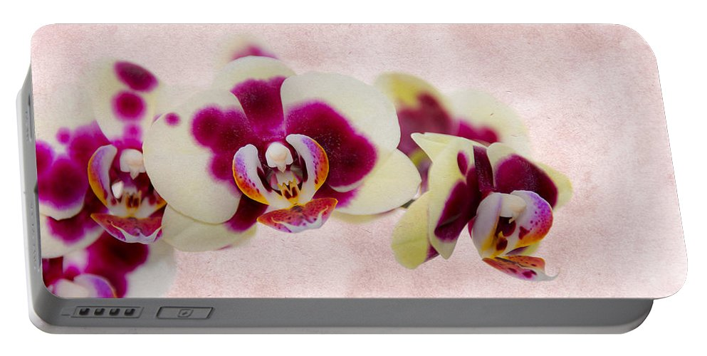 Anniversary Portable Battery Charger featuring the photograph Tiger Orchid by Svetlana Sewell