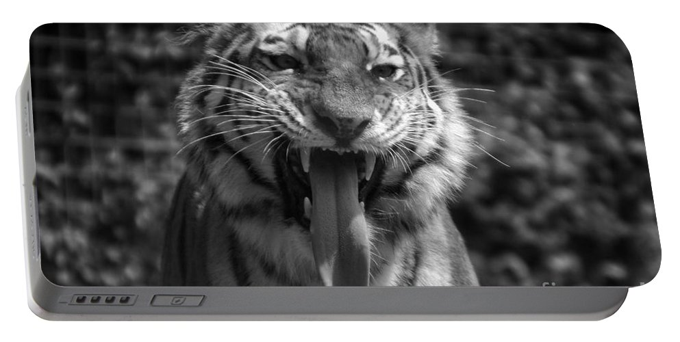 Animals Portable Battery Charger featuring the photograph Tiger Say Aw by Thomas Woolworth