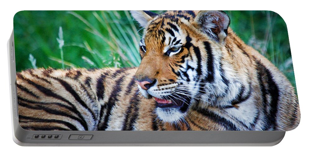 Tiger Portable Battery Charger featuring the photograph Tiger Stripes by Athena Mckinzie