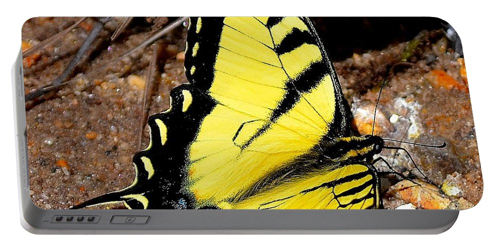 Tiger Portable Battery Charger featuring the photograph Tiger Swallowtail Butterfly by Tara Potts