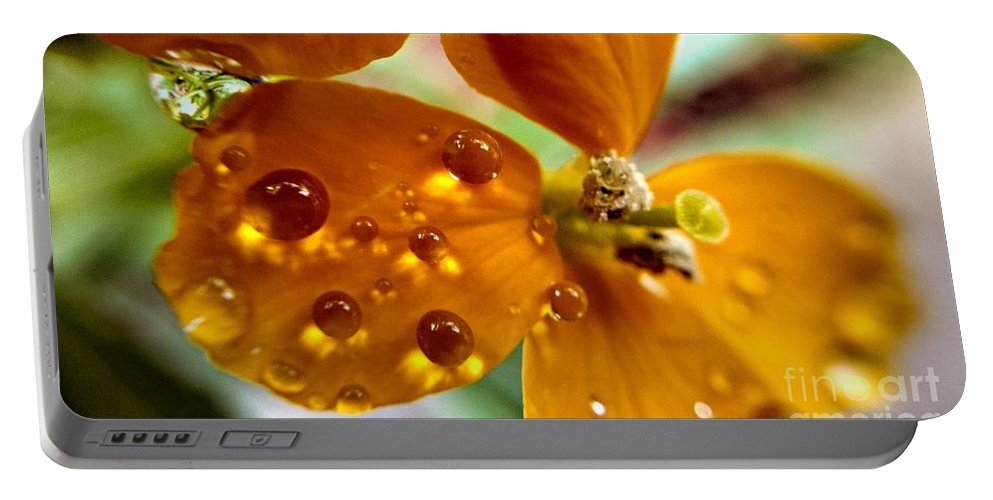 Dew On Wildflower Portable Battery Charger featuring the photograph Tiny Dew Drop On Wild Flower Macro by Peggy Franz