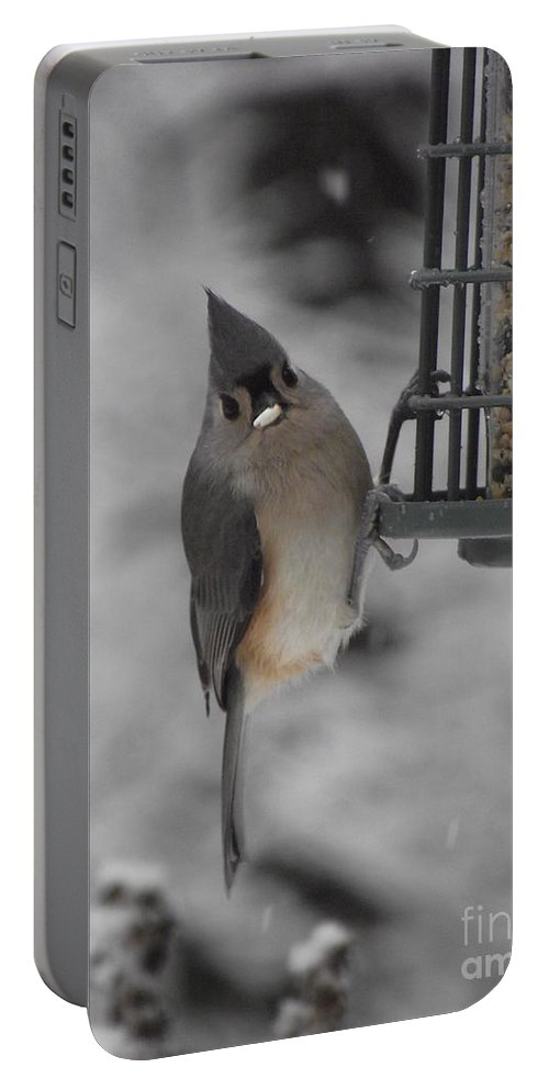 Titmouse Bird Portable Battery Charger featuring the photograph Tiny Titmouse by Michelle Welles