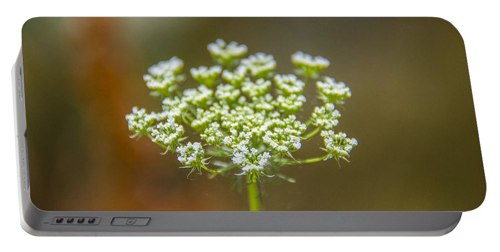 Tiny White Flowers Portable Battery Charger featuring the photograph Tiny White Flowers by Sotiris Filippou