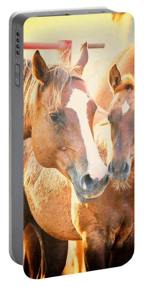 Horse Portable Battery Charger featuring the photograph TLC by Kelli Brown