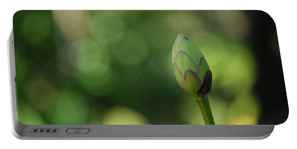 Nymphaea Portable Battery Charger featuring the photograph To Stand Alone Number Two by Heather Kirk